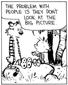 F626acee2006ad3bc179cd549d9e0ce8 big picture calvin and hobbes