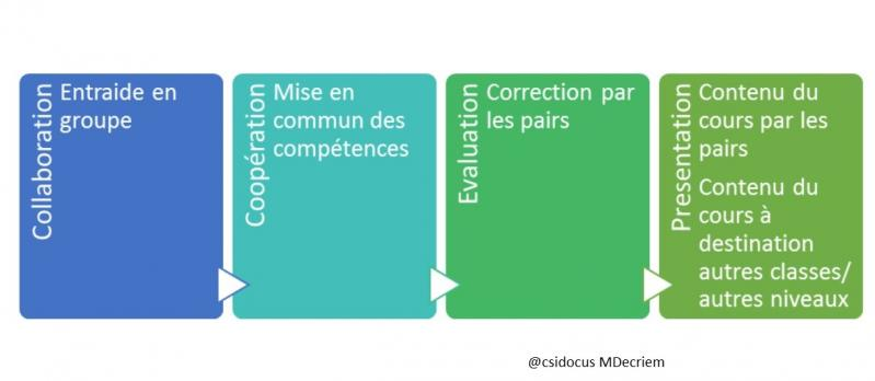 Miniprofs